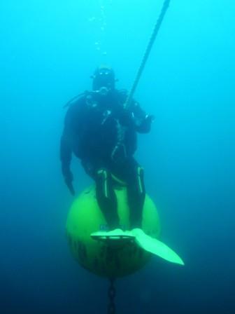 foto subacquea