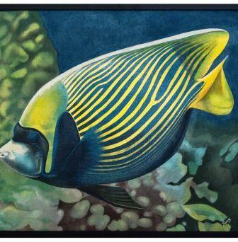 Opera di Savy Pesce tropicale