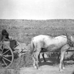 Bambini su carro  - Arizona  (1906)