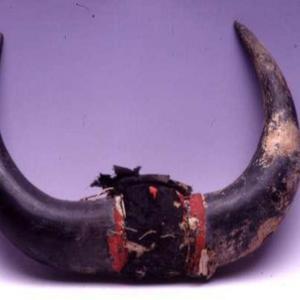 Corna di bisonte, 1865 – 1875 circa (Dakota dell'Ovest, Brulee)