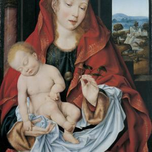 Madonna con il Bambino (J. Van Cleve)