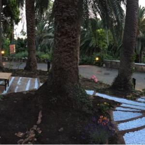 Etno music garden