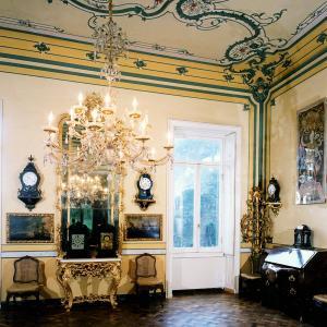Museo Luxoro - salone