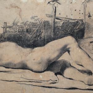 Studio di nudo: giovane disteso davanti a una siepe